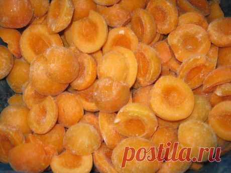Два способа заморозки абрикос на зиму » Сусеки