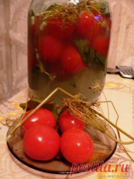 Засолка помидоров холодным способом. Быстро, без кипячения, а главное очень вкусно! На зиму я консервирую помидоры, но еще и обязательно делаю засолку помидоров холодным способом. Этот процесс очень быстрый, не сложный, а помидорчики потом просто улетают. Процесс приготовления: В чистую трехлитровую банку складываем вымытые помидоры, каждый в нескольких местах прокалываем...