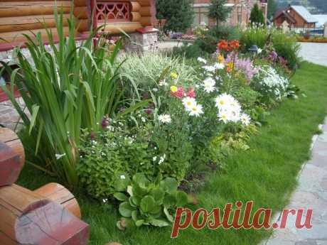 Красивое оформление клумб и цветников Создание цветников завершает оформление придомовой территории или дачного участка. Часто их располагают там, где образуется свободное пространство после обустройства дорожек, посадки деревьев и кустарников. Можно создать весенне-летние, летне-осенние или непрерывного цветения клумбы. Они...