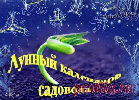 Лунный календарь для растений на май 2016 год.