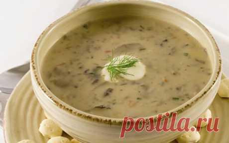 Суп из сухих белых грибов