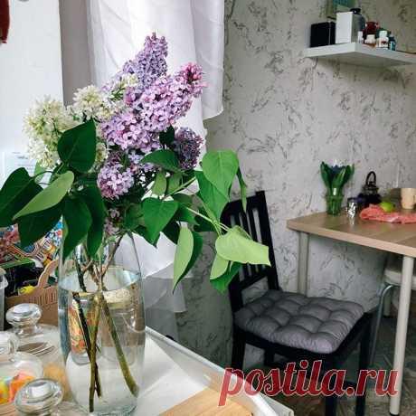 Photo by Обожаю Быть Женщиной in Bulgakovo, Bashkortostan, Russia. На изображении может находиться: растение, стол, цветок и в помещении