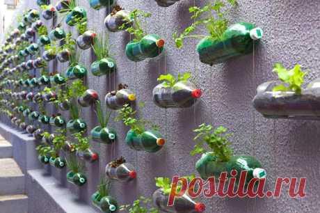 10 способов использовать старые пластиковые бутылки и пластиковую посуду Как можно использовать старые пластиковые бутылки, ложки, пробки и прочий пластиковый мусор? Можно просто выбросить, а можно создать удивительные хэнд-мейд проекты на зависть всем.   Пластик ПЭТ или п…
