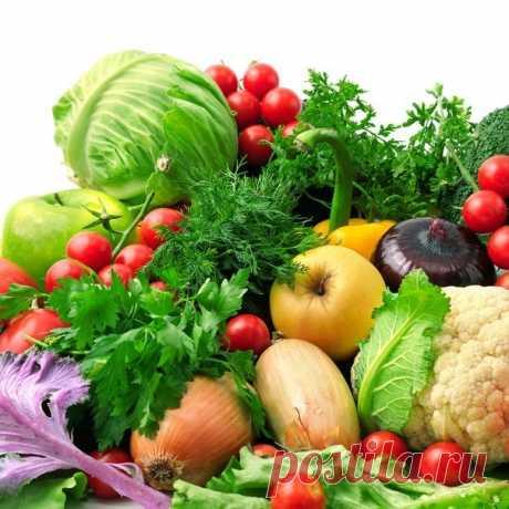 Овощи, которые улучшают работу почек