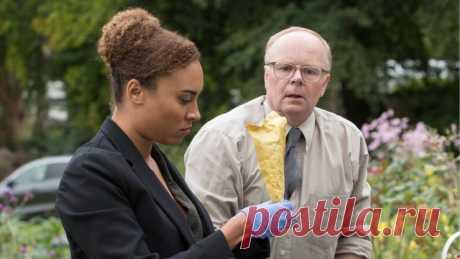 Четыре британских сериала, которые порадуют любителей детективов | Призрачная редакция | Яндекс Дзен
