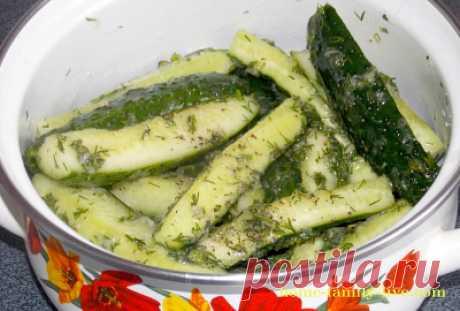Огурцы малосольные/Сайт с пошаговыми рецептами с фото для тех кто любит готовить