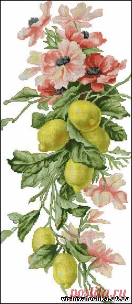 Панелька с лимонами - Фрукты, Овощи, Натюрморт - Флора - СХЕМЫ - ВЫШИВКА КРЕСТОМ