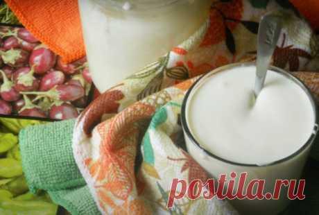 Как сделать сметану из молока - Лучший сайт кулинарии