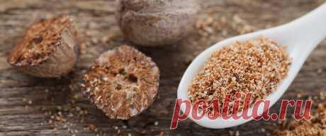 Приправа мускатный орех: полезные свойства и противопоказания. Куда добавляют мускатный орех Мускатный орех - специфическая приправа. Узнать о полезных свойствах, противопоказаниях и других интересных фактах о мускатном орехе можно на нашем сайте!