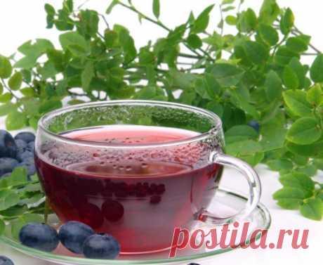 Черничный чай Сушёные ягоды черники, как ни странно,не передают чаю вкуса ягод. А вот чай, заваренныйиз листьев черники, по вкусу и аромату подобен свежим ягодам. При этом надо знать, что вкуснее и полезнеечайполучается из молодых листочков, поэтому правильно будет собирать...