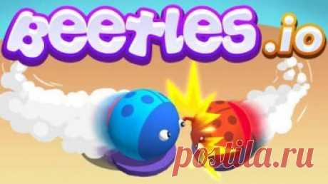 Beetles io: Жуки И.О. Beetles io - это  игра io  для поклонников классических игр для io: эволюция, жесткая конкуренция и борьба до последнего, чтобы выжить.