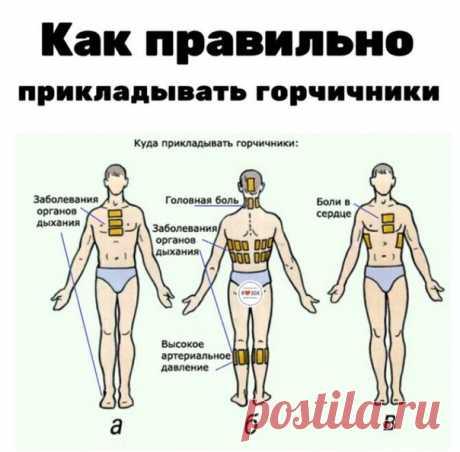 Народная медицина • Здоровье • Аюрведа