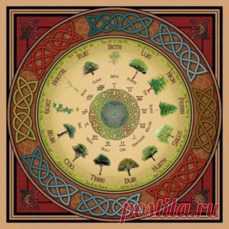 Друиды – люди Силы Кельтской Цивилизации