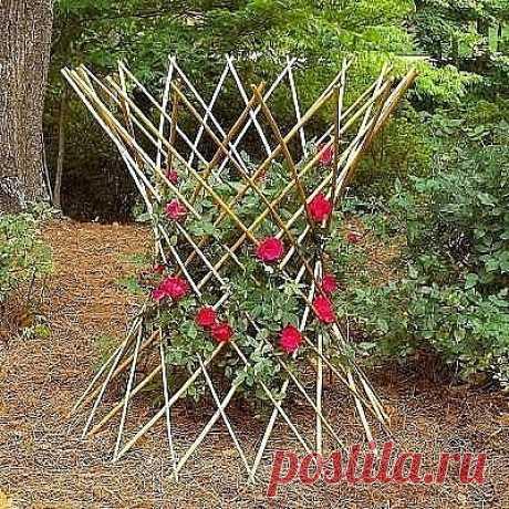 Идеи опор для растений   Как вам идеи деревянных опор для цветов?                   https://ok.ru/aprelevna/topics                                     Яндекс фото