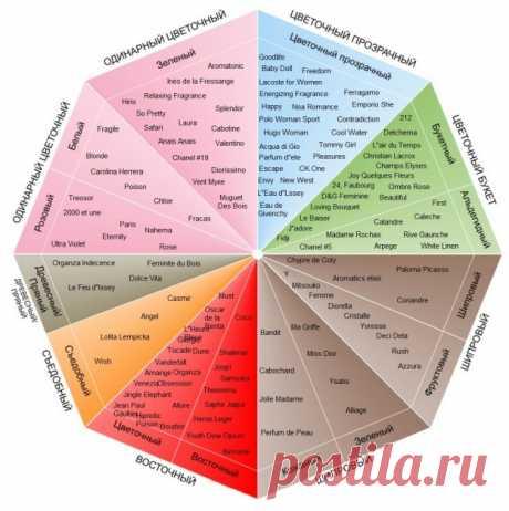 Классификация ароматов | Блог сайта Deonica