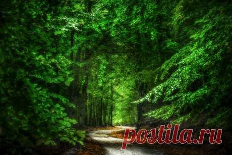 Passage Explore tronik0's photos on Flickr. tronik0 has uploaded 292 photos to Flickr.