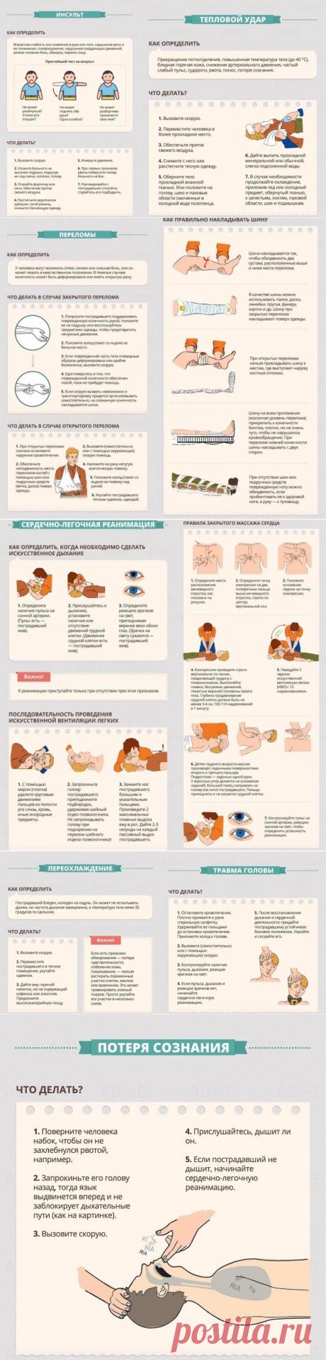 La información importante - el prestar de los primeros auxilios