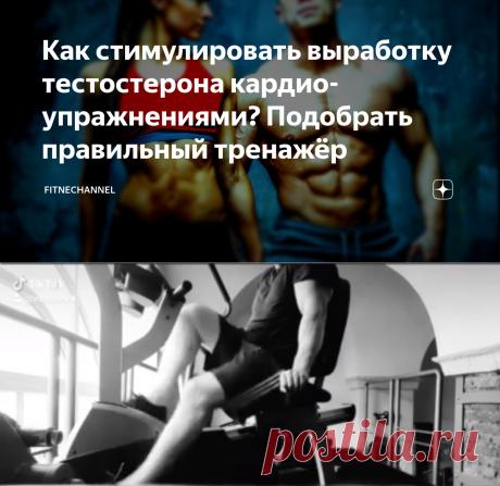 Как стимулировать выработку тестостерона кардио-упражнениями? Подобрать правильный тренажёр | fitnechannel | Яндекс Дзен