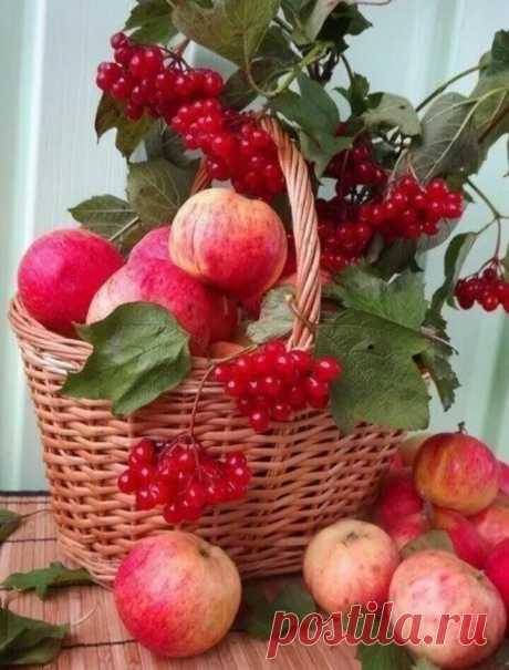 «🌺 Дары лета. Ягоды,фрукты 🌺 »в Яндекс.Коллекциях