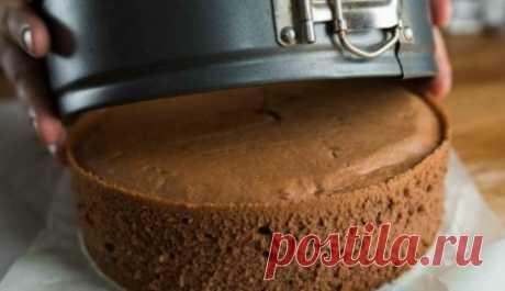 Шоколадный бисквит. Из него готовят самые разнообразные торты Такой бисквит можно сразу промазать кремом, украсить по вкусу и подавать торт к ароматному горячему чаю.