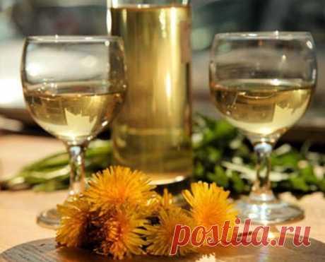 Вино из одуванчиков – рецепт в домашних условиях