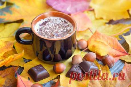 Как не поправиться осенью: 7 универсальных советов | SimpleSlim