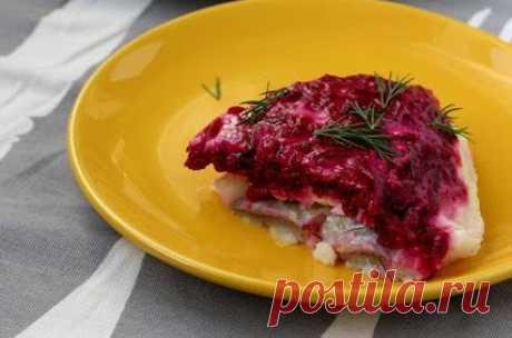 РАЗРЕШЕНО ХУДЕЮЩИМ. Популярные блюда из свёклы