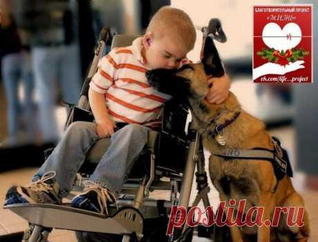 Картинки (доброта и милосердие). – 162 фотографии | ВКонтакте