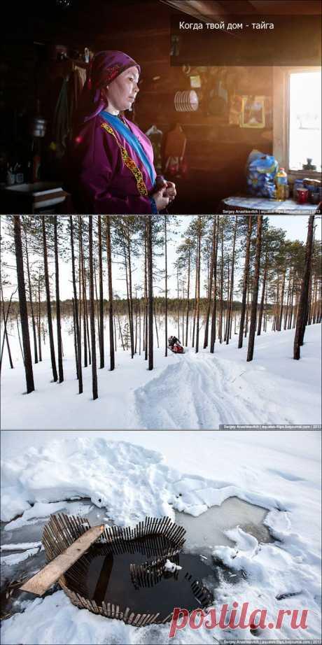 Когда твой дом – тайга   Fresher - Лучшее из Рунета за день
