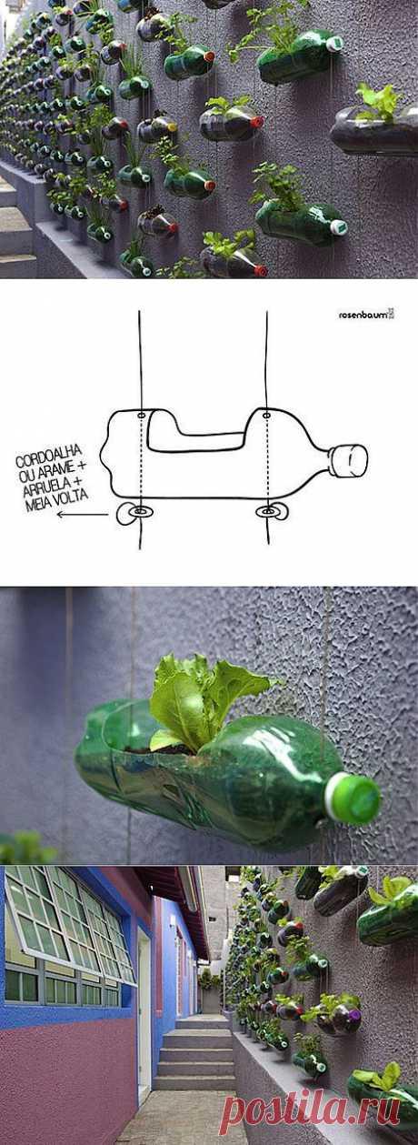 Используем пластиковые бутылки для вертикальных садов на InfoHome.com.ua