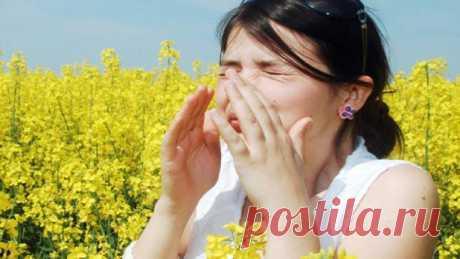 Народные средства от аллергии — 5 рецептов — ХОЗЯЮШКА