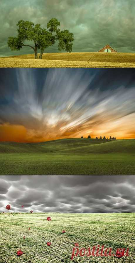 Потрясающие сельские пейзажи Лизы Вуд (Lisa Wood) | Newpix.ru - позитивный интернет-журнал