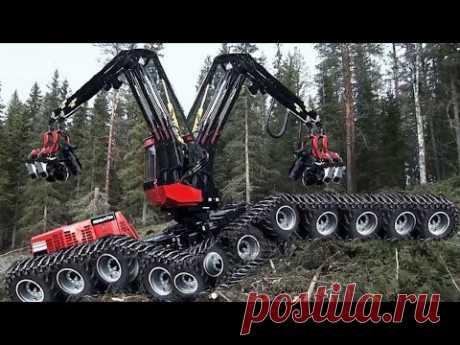 Dangerous Fastest Chainsaw Cutting Tree Machines, Big Felling Tree Heavy Equipment Machine