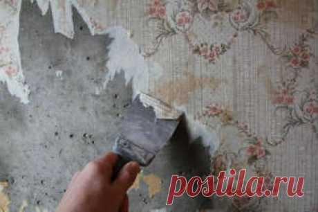 Как снять со стен виниловые обои