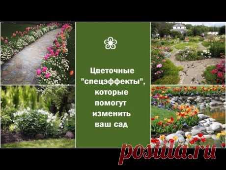 """❀ Цветочные """"спецэффекты"""", которые помогут изменить ваш сад"""