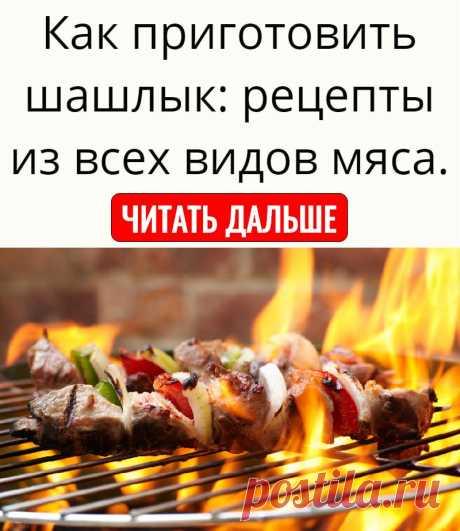 Как приготовить шашлык: рецепты из всех видов мяса.