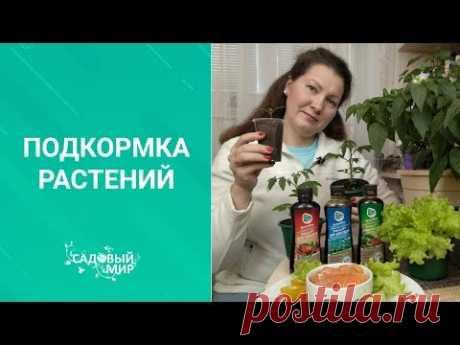 100% органические подкормки для томатов и огурцов. Кормите любимых только натуральным!