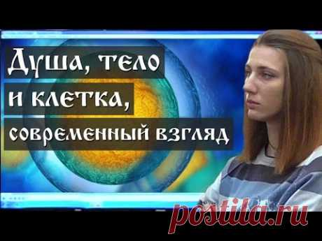 Healthy lifestyle. As the person is arranged (Lecture 1.4, Semenov I.N.) - YouTube