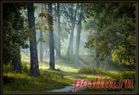 фото пейзажей природы художественное работы фотохудожников: 21 тыс изображений найдено в Яндекс.Картинках