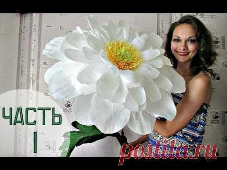 Se siento la Campanita :) Las flores enormes (la parte 1)