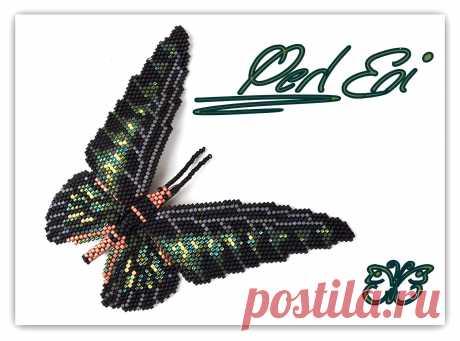 Perl-eni:蝴蝶和天使
