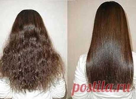 Домашние средства для борьбы с вьющимися волосами   Dusea.ru   Первый женский