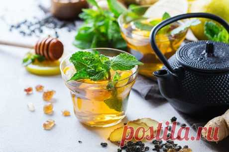 В чай — крапиву и имбирь. Что поможет снять сонливость и усталость осенью? | Здоровая жизнь | Здоровье | Аргументы и Факты