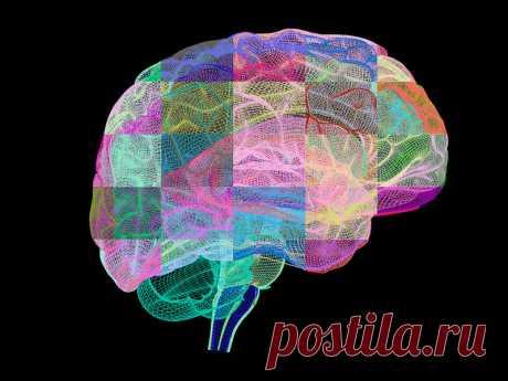 Комплекс упражнений для мозга