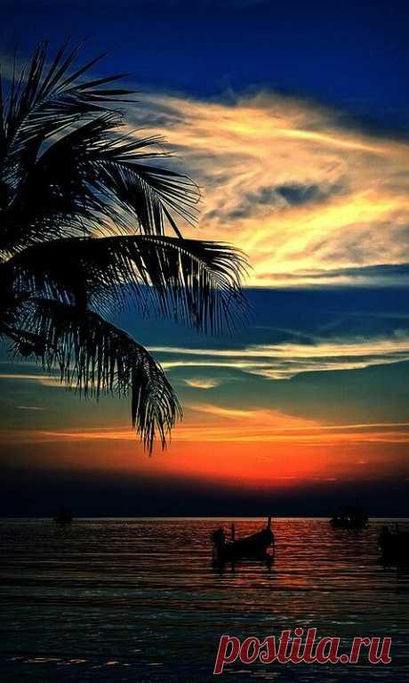 Sunset  |  Pinterest