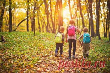 Как научить ребёнка бережному отношению к природе? Многие специалисты говорят о том, чтобы вырастить новое поколение людей, которые изначально будут понимать необходимость заботиться о природе и планете в целом. Я разделяю эту мысль и предлагаю в подборку книг на тему экологии: Е. Ульева «Спасай планету!», «Экологические сказки. Тима и Гриня спасают планету», Экокнига «Спасти лес!» П. Манчини, Л. Де Леоне «Сохрани планету. […] Читай дальше на сайте. Жми подробнее ➡