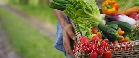 Подробная статья о том, какие существуют виды вегетарианства.