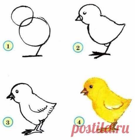 Как нарисовать птиц с детьми — Поделки с детьми