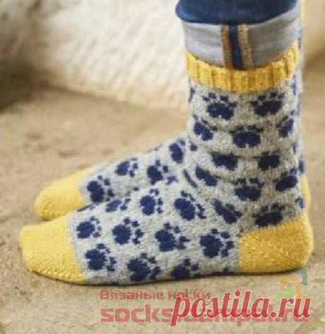 Вязаные носки «Pawfect pair» | ВЯЗАНЫЕ НОСКИ