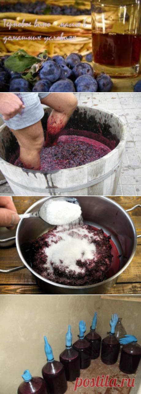 Изготовление вина в домашних условиях: простые рецепты. Лучшие рецепты домашних вин